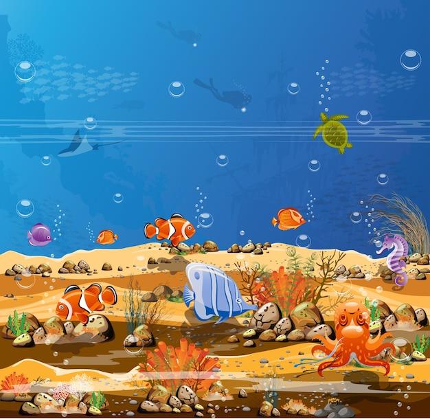 Paesaggi oceanici con pesci marini, subacquei e barriere coralline.