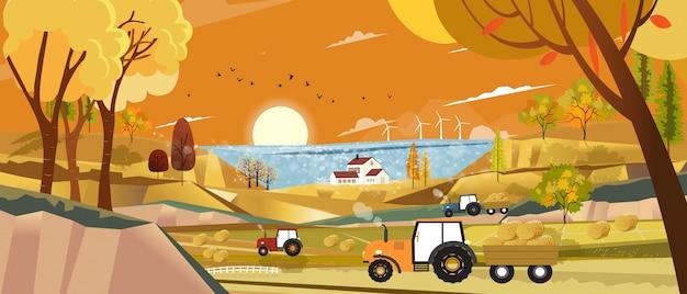 Paesaggio autunnale con alba vista sul lago, campo raccolto con balle di fattoria, trattore e paglia in campagna, vista panoramica di terreni agricoli nella stagione autunnale con fogliame arancione.