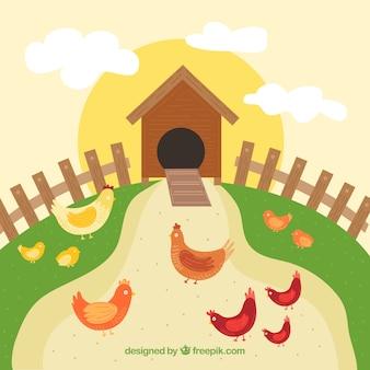 Paesaggio con pollo di coop
