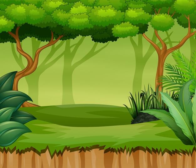 Paesaggio della foresta del fumetto con piante e alberi