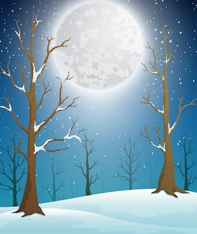 Paesaggio della foresta di inverno con luce della luna e alberi spogli