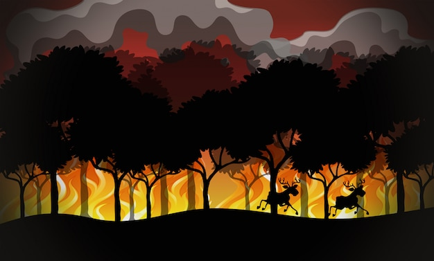 Paesaggio di disastro di wildfire di sagoma