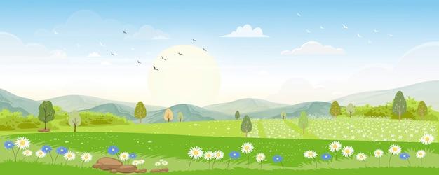 Paesaggio di panorama di estate con l'ape del miele che raccoglie polline sui fiori di mattina