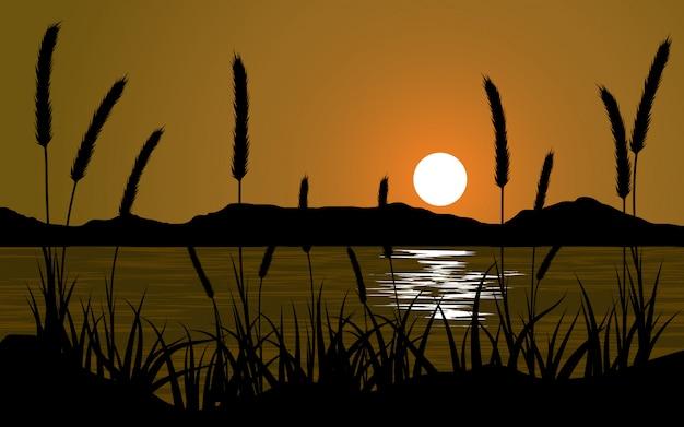 Paesaggio di tramonto della siluetta dell'erba con il lago