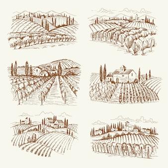 Paesaggio vigneto. illustrazioni disegnate a mano delle vigne del vino del villaggio dell'annata della francia o dell'italia