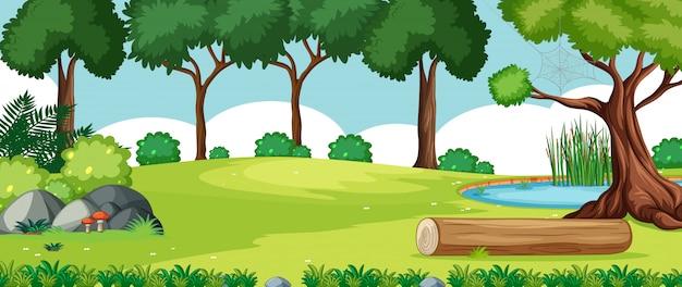 Paesaggio vuoto nella scena del parco naturale con molti alberi e palude