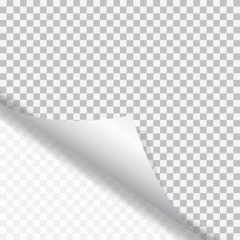 Pagina arricciata con ombra su adesivo di carta