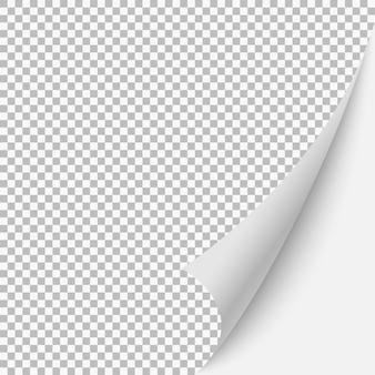 Pagina arricciata pagina bianca con ombra. illustrazione modello vettoriale per il vostro disegno