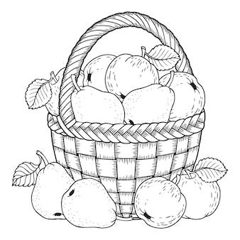 Pagina da colorare per adulti. sagoma di sfondo bianco e nero. raccolto di mele e pere mature in un cesto. giorno del ringraziamento.