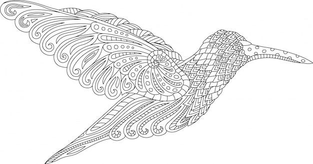 Pagina del libro da colorare con il colibrì su fondo bianco