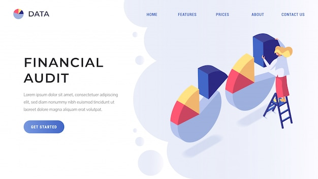 Pagina di destinazione dell'audit finanziario