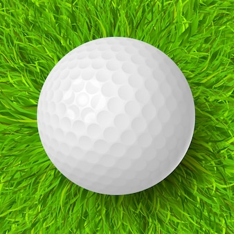 Pallina da golf sull'erba