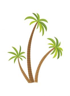Palma dell'illustrazione di vettore isolata. albero di cocco. palma. turismo, simbolo di viaggio, segno