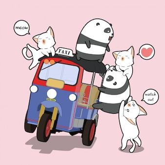 Panda e gatti kawaii con triciclo a motore