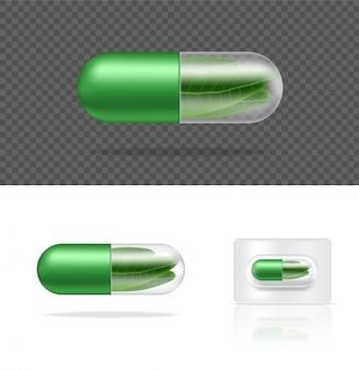 Pannello della capsula della medicina di erbe della pillola trasparente realistica naturale