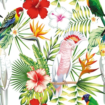 Pappagallo di uccelli multicolor esotici multicolor senza cuciture, ara con piante tropicali, foglie di palma di banana, fiori strelitzia, ibisco