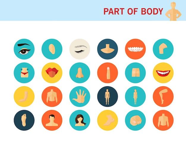 Parte delle icone piane del concetto di corpo.