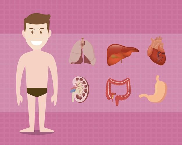 Parti del corpo umano con stile cartoon