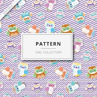 Pattern cute illustrations gufi colorati