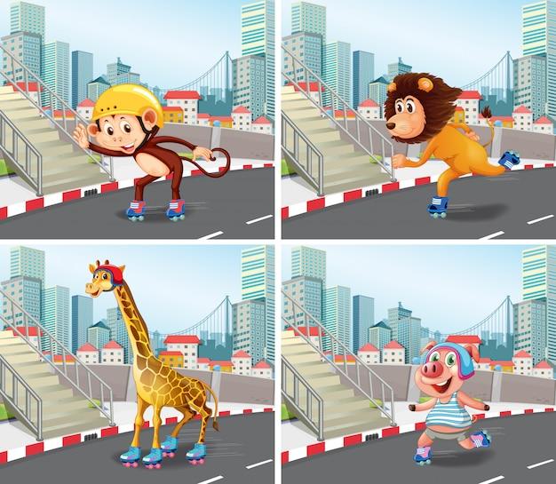 Pattinatore di animali selvatici in città