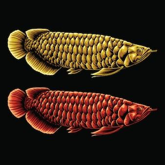 Pesce arowana