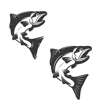 Pesce di color salmone isolato su bianco