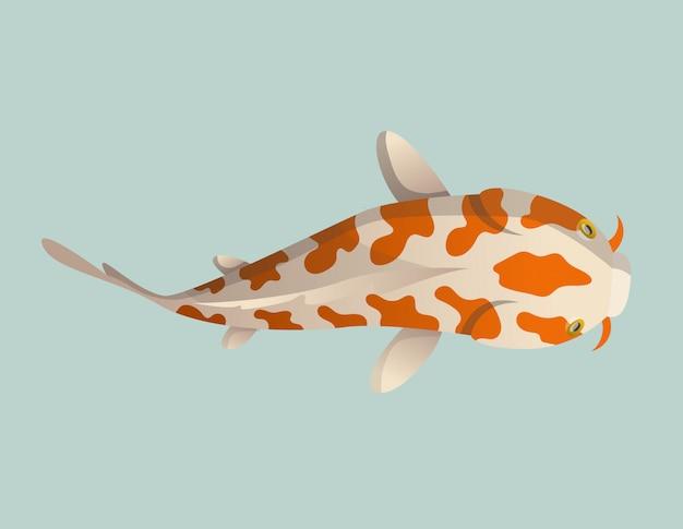 Pesce galleggiante con calma. carpa giapponese del pesce di koi, koi orientale variopinto in asia. pesce rosso cinese, pesca tradizionale