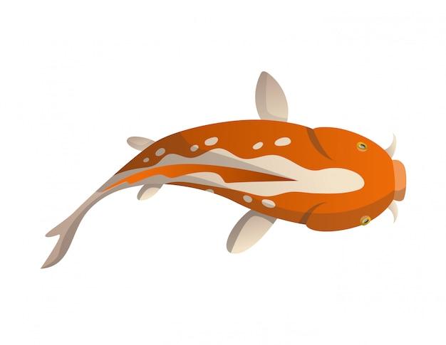 Pesce galleggiante con calma. carpa giapponese dell'illustrazione del pesce di koi, koi orientale variopinto in asia. pesce rosso cinese, industria della pesca tradizionale isolata