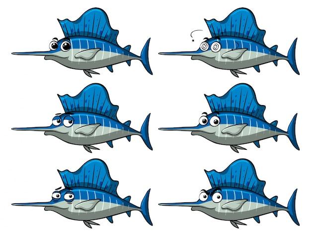 Pesce spada con diverse espressioni facciali
