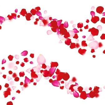 Petali di rosa che cade sullo sfondo