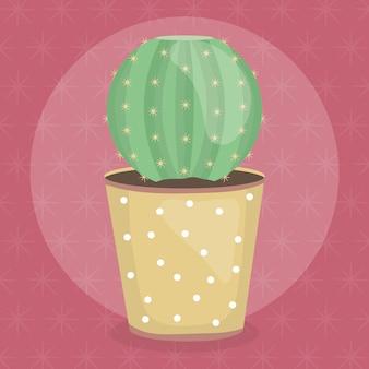Pianta di cactus esotica in vaso di ceramica