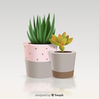 Pianta di cactus in stile realistico