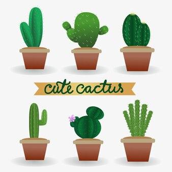 Pianta di cactus vettoriale carino realistico nella collezione di pentole