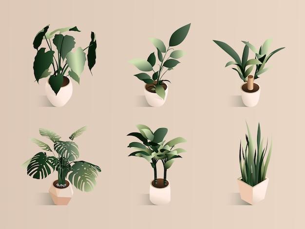 Pianta isometrica messa in vaso piccolo insieme moderno. erbe verdi fresche.