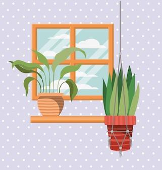 Piante d'appartamento in scaffale con scena di finestra