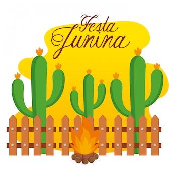 Piante di cactus con fuoco di legna per festa junina