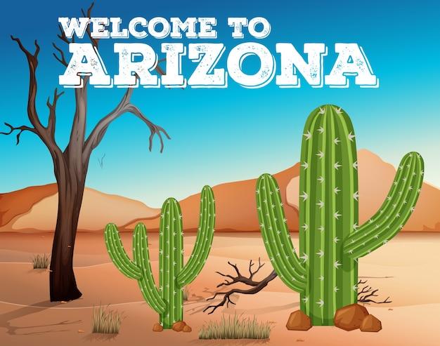 Piante di cactus nello stato dell'arizona