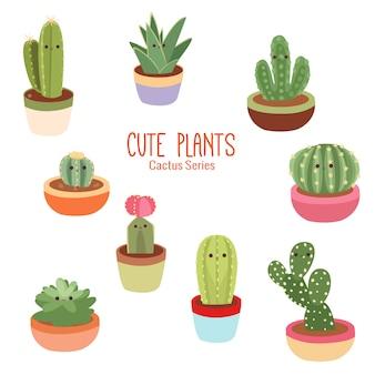 Piante di cactus tropicale carino