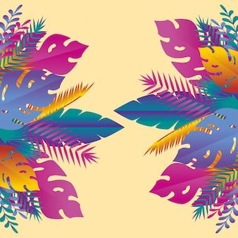 Piante di foglie tropicali e colorate