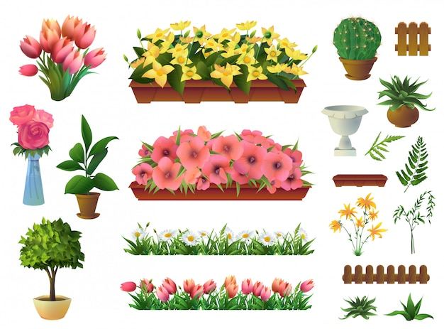 Piante e fiori, insieme di elementi