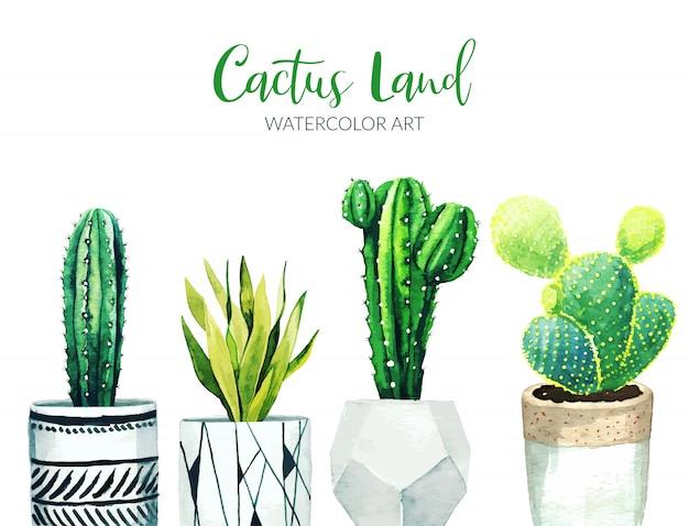 Piante in vaso del cactus, illustrazione disegnata a mano dell'acquerello