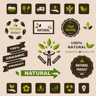 Piatte elementi grafici retrò ecologia