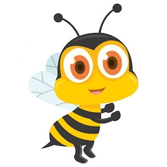 Piccola ape con sfondo bianco