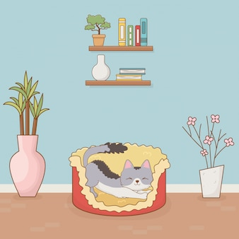 Piccola mascotte gatto nella stanza di casa