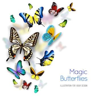 Piccole e grandi farfalle magiche variopinte isolate su fondo bianco con le ombre