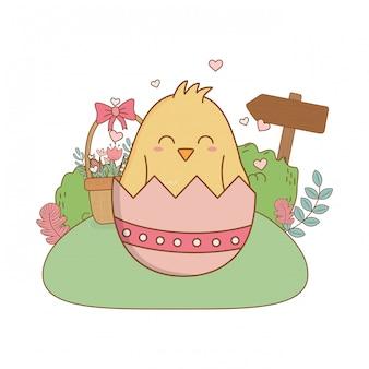 Piccolo pulcino con l'uovo rotto nel carattere di pasqua del giardino