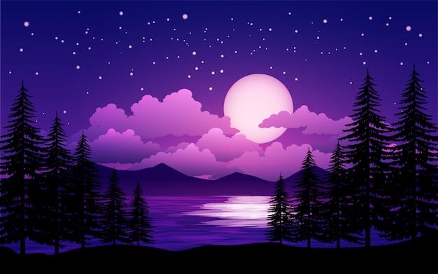 Pini e cielo stellato