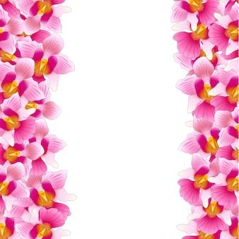 Pink vanda miss joaquim orchid border
