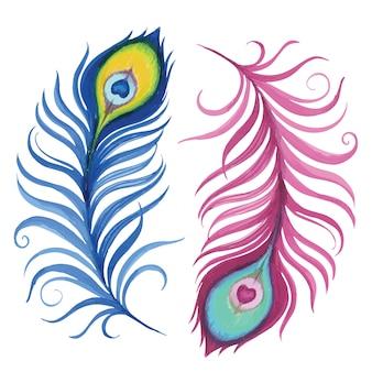 Piume di pavone dell'acquerello