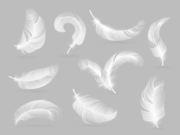 Piume realistiche. piuma di caduta dell'uccello bianco isolata su bianco